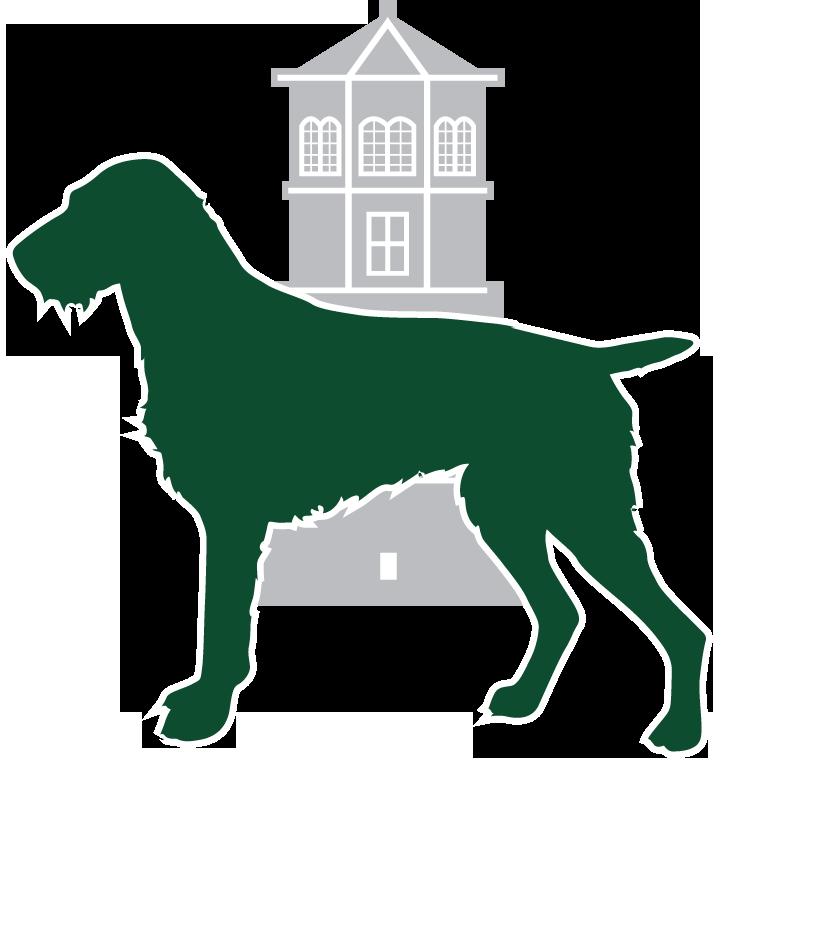 Drahthaar vom Schlossturm